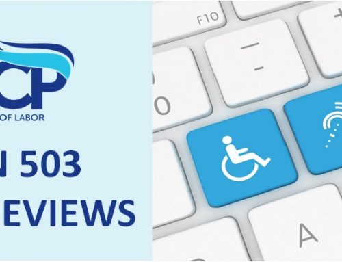 Announcing Section 503 Focused Review Webinars